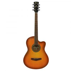 best-guitars-for-beginners
